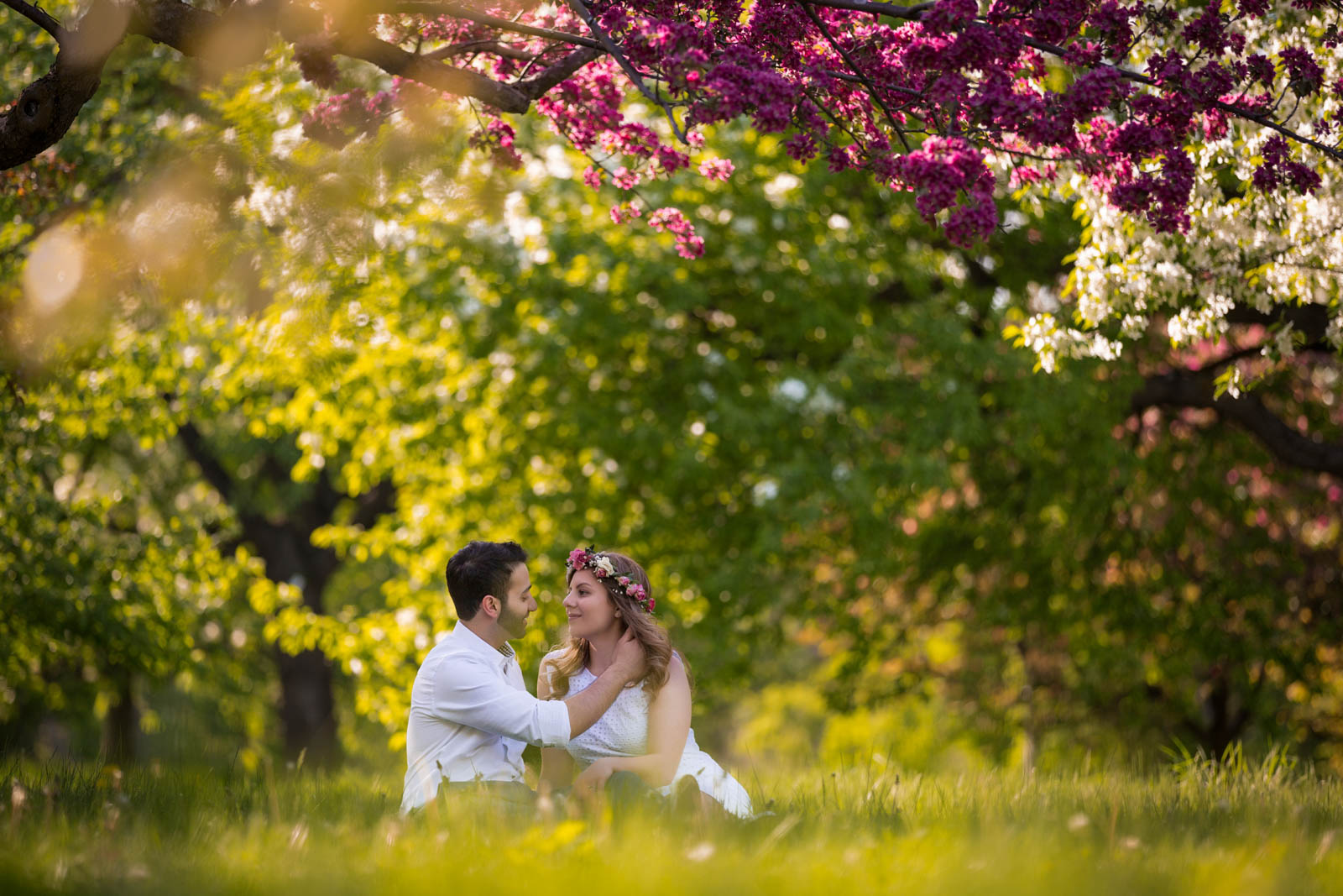 botanical garden wedding montreal pixelicious photography