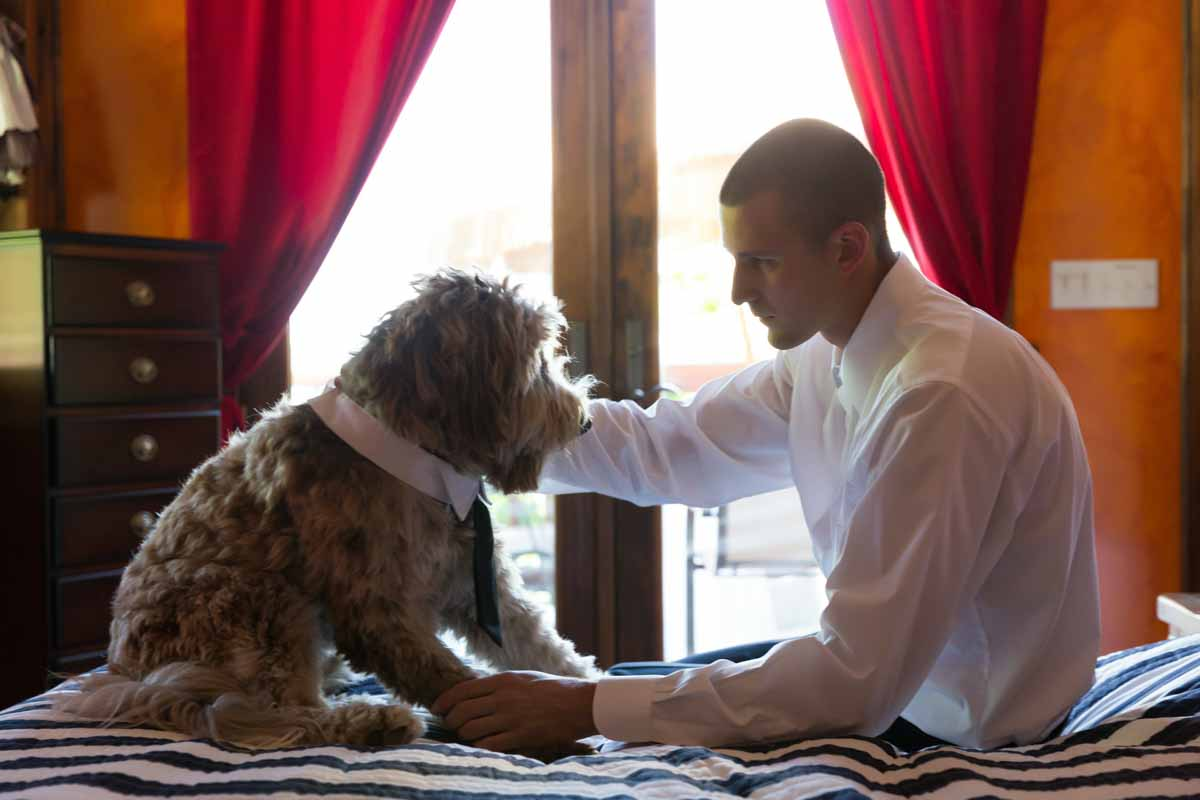 Pixelicious Kc and Quinn wedding groom preparation with dog
