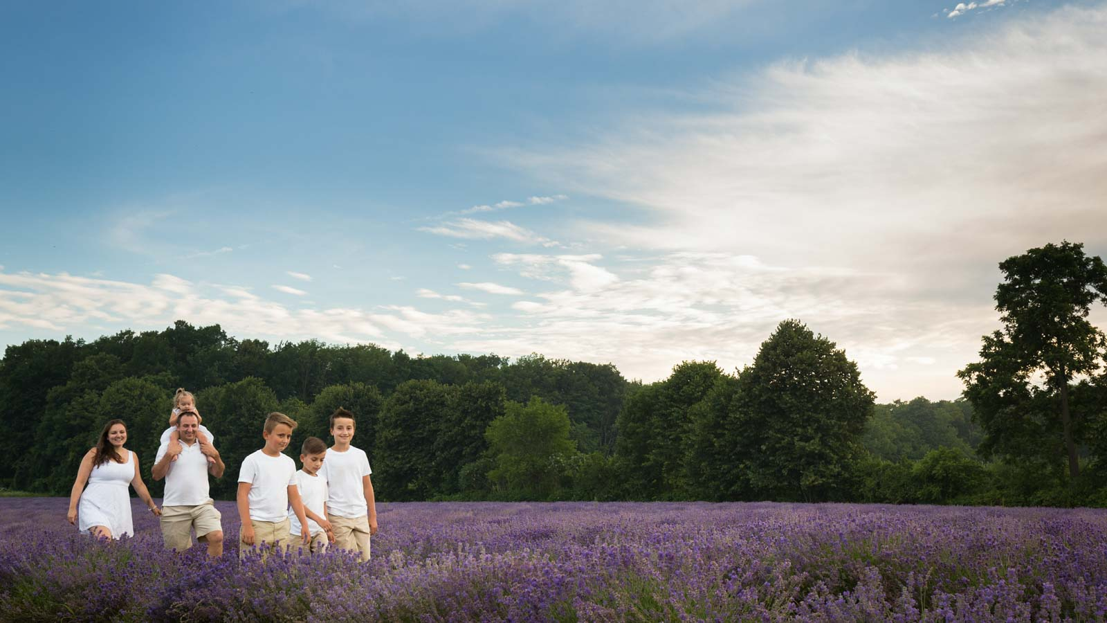 Maison lavande wide shot of lavender field