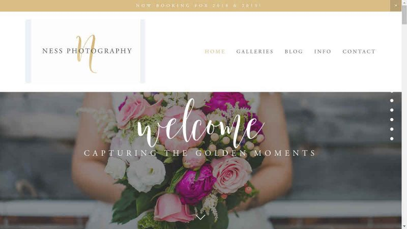 Screenshot of Ness Photography's homepage